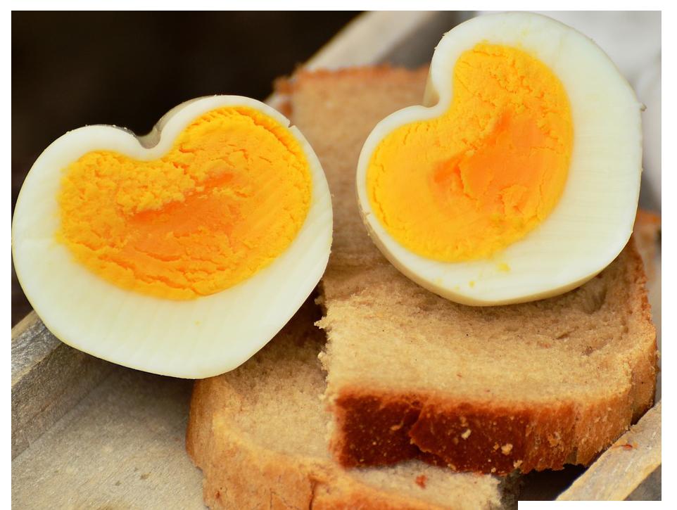 egg sandwich png copy
