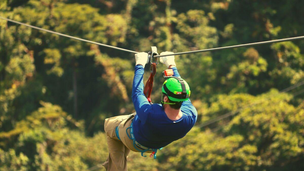 Zip-line along the treetops