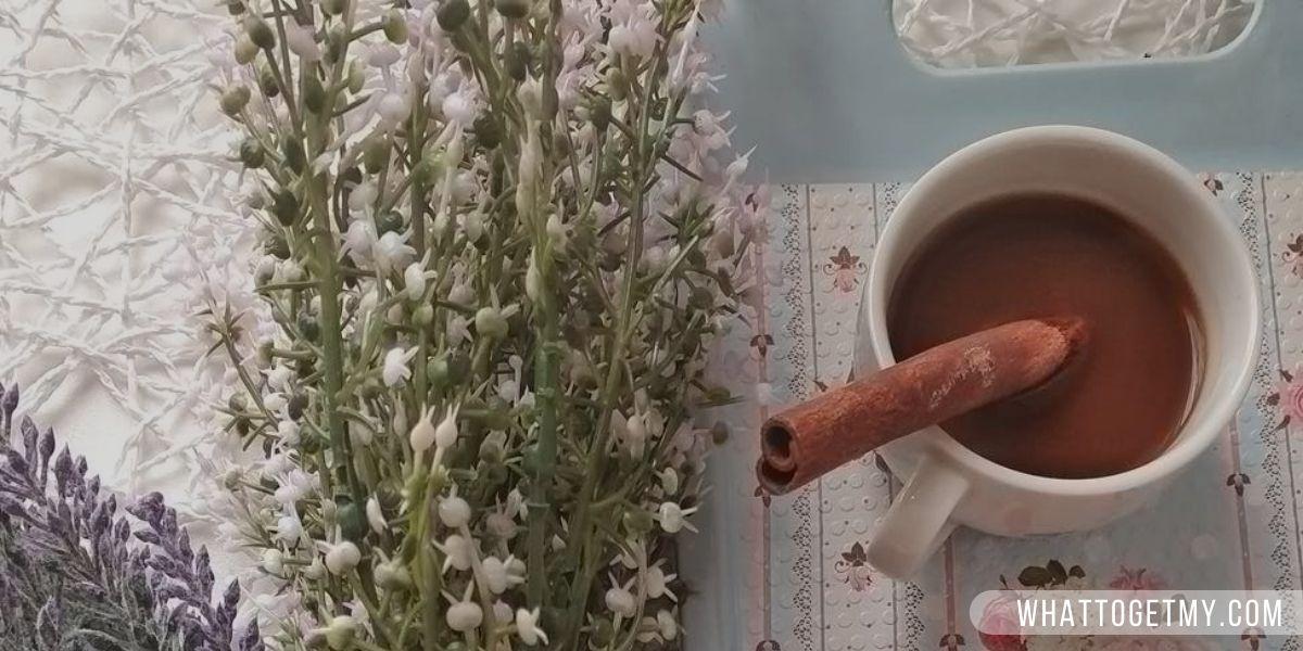 Homemade Hot Cocoa (Healthy Alternatives to Coffee)