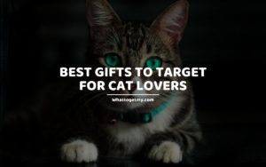 BEST GIFTS TO TARGET FOR CAT LOVERS