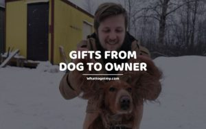 GIFTS FROM DOG TO OWNER