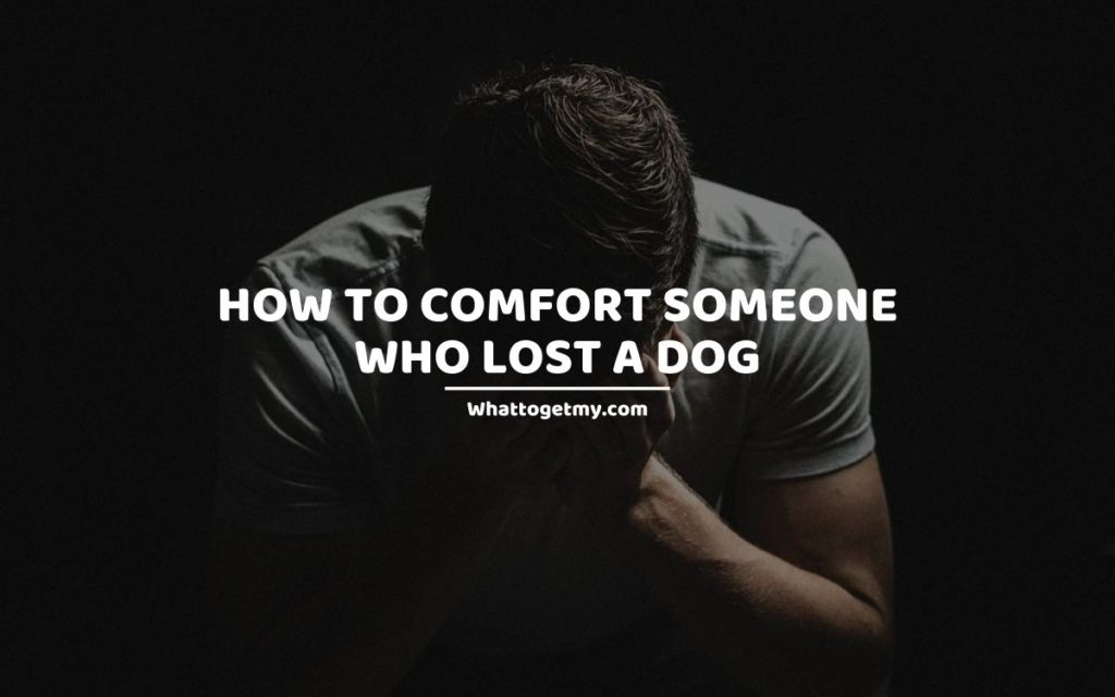 HOW TO COMFORT SOMEONE WHO LOST A DOG