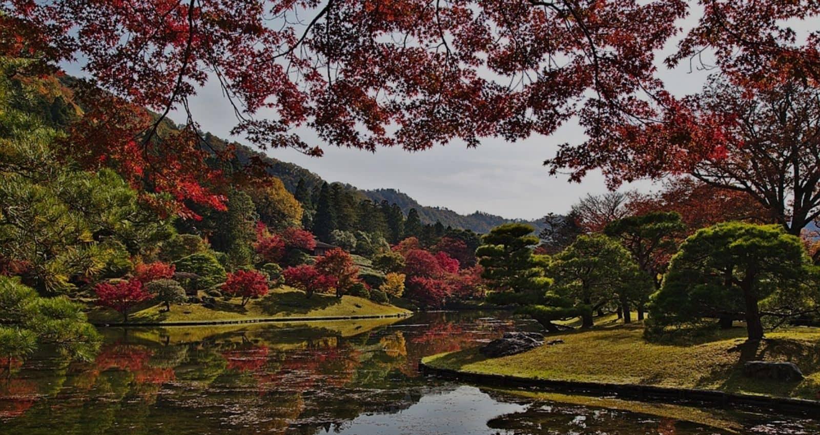 japan-kyoto-park-autumn-leaves