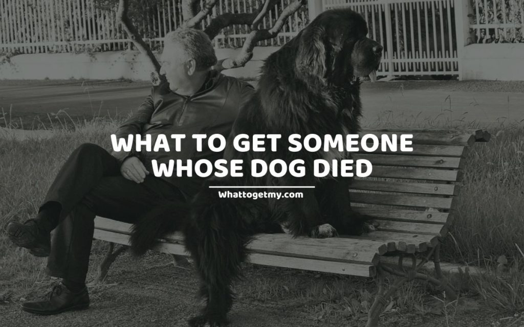 What to Get Someone Whose Dog Died
