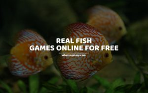 Real Fish Games Online For Free