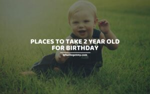 PLACES TO TAKE 2 YEAR OLD FOR BIRTHDAY