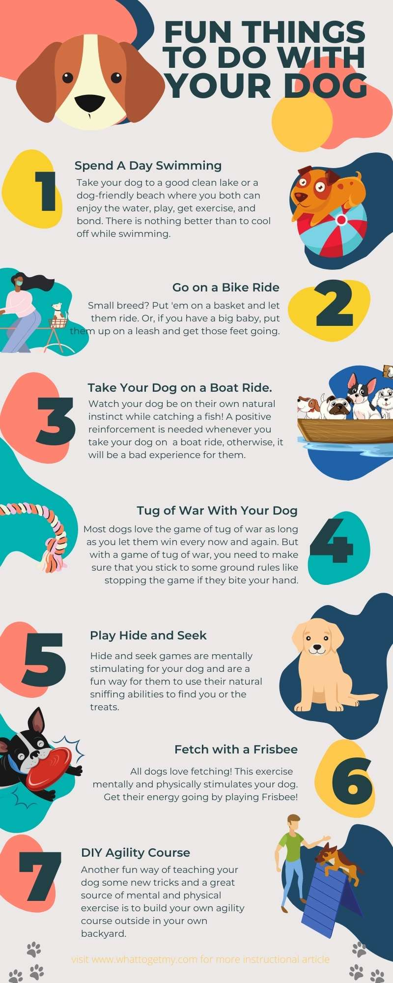 Fun Outdoor Activities With Dogs