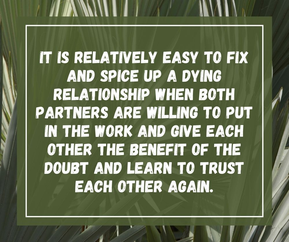 it is relatively easy to fix and spice up a dying relationship when both partners are willing to put in the work